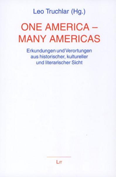 One America - Many Americas